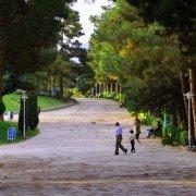 پارک ساعی